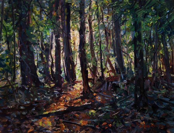 kyle_buckland-TheForestsEdge