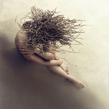 marisa_s_white_Uprooted