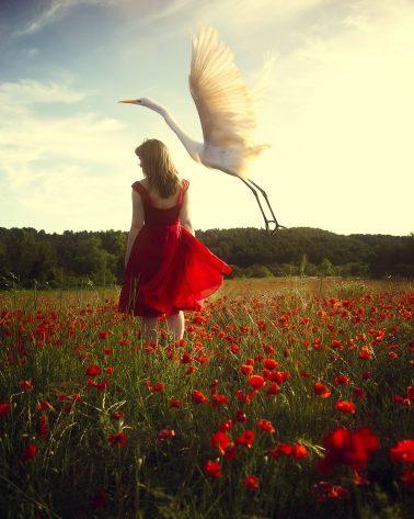 marisa_s_white-AWhisperofFeather&Sky